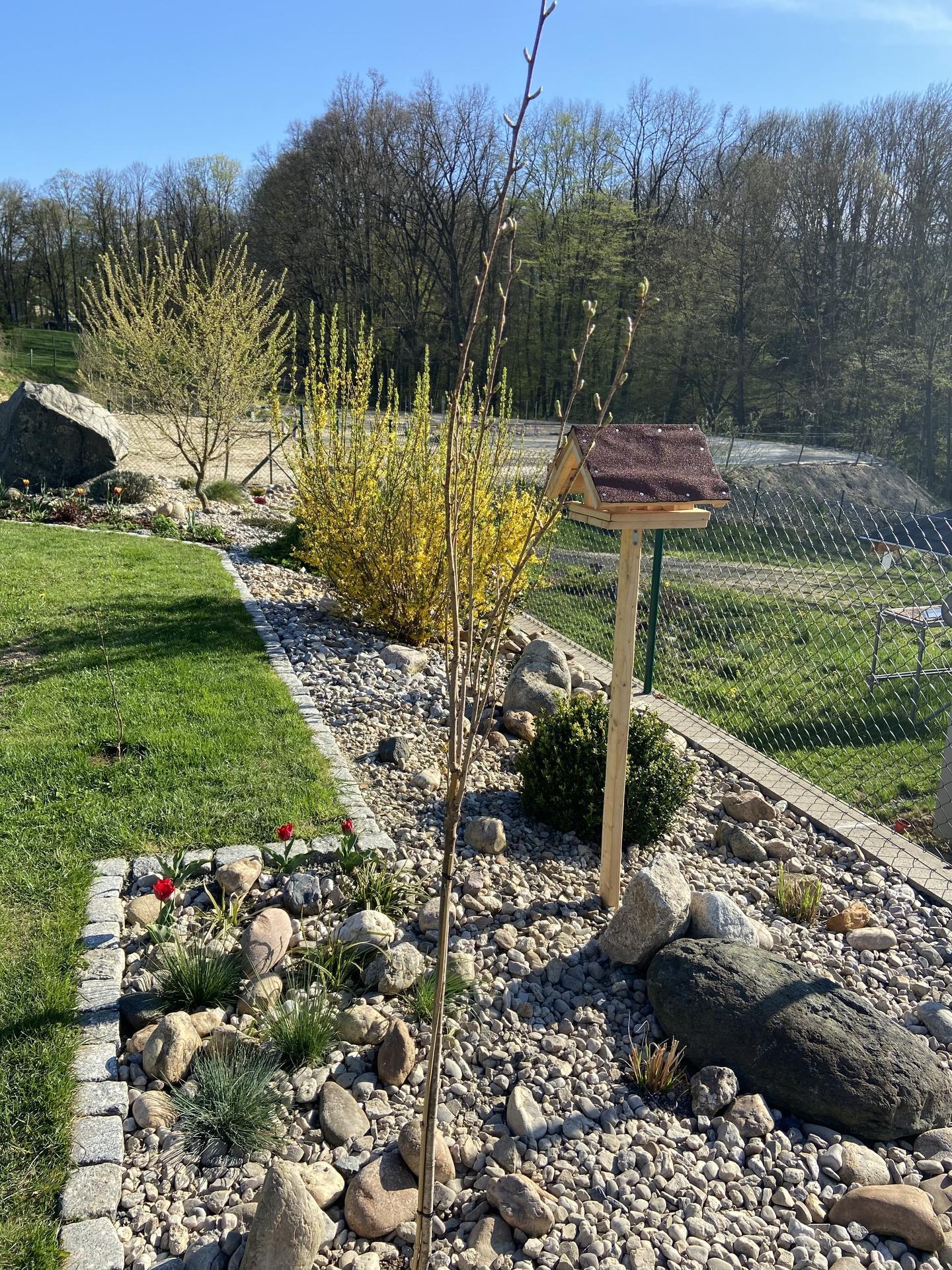 Pergola + zimní zahrada + zahrada - Obrázek č. 62