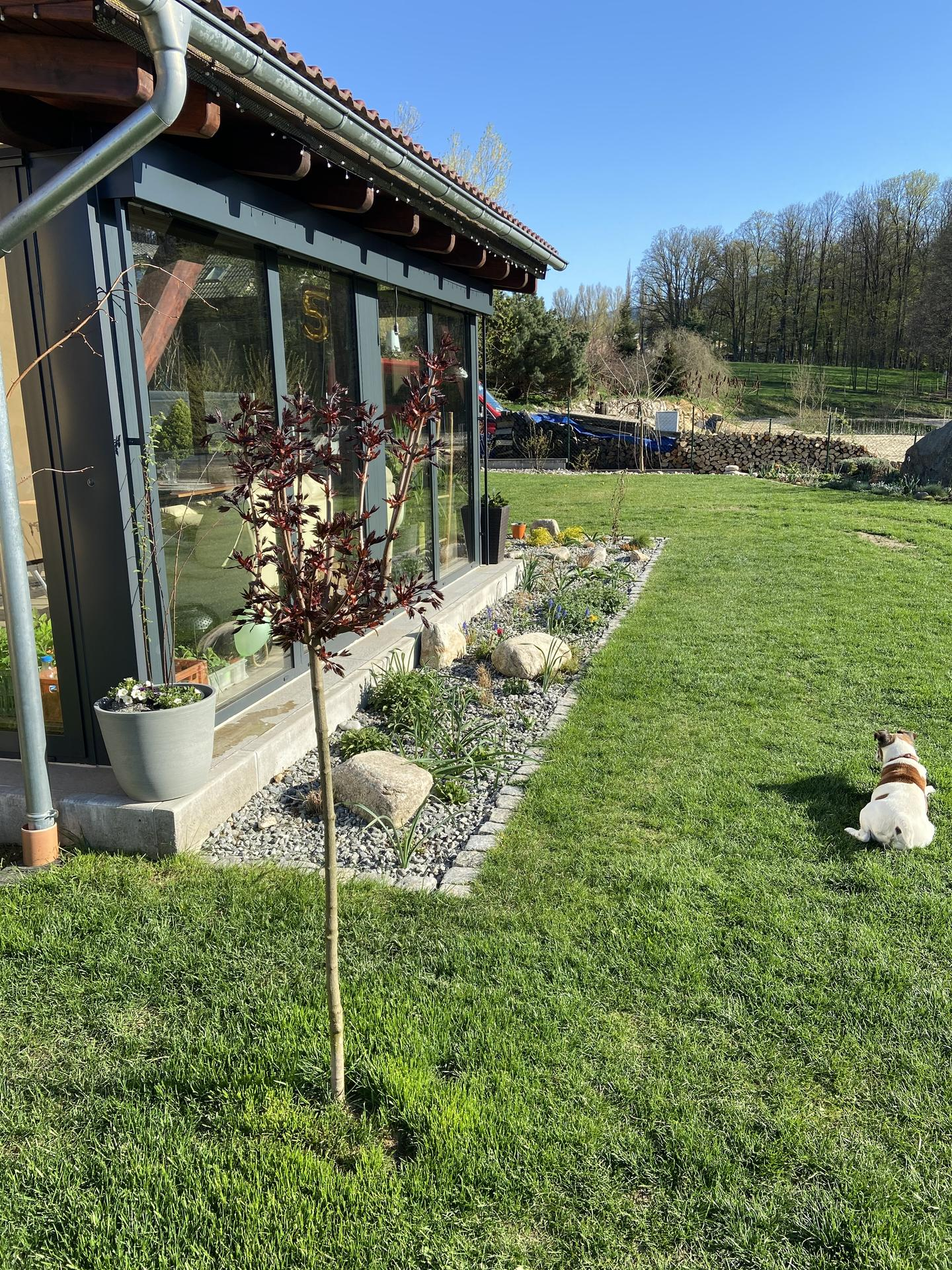 Pergola + zimní zahrada + zahrada - Obrázek č. 61