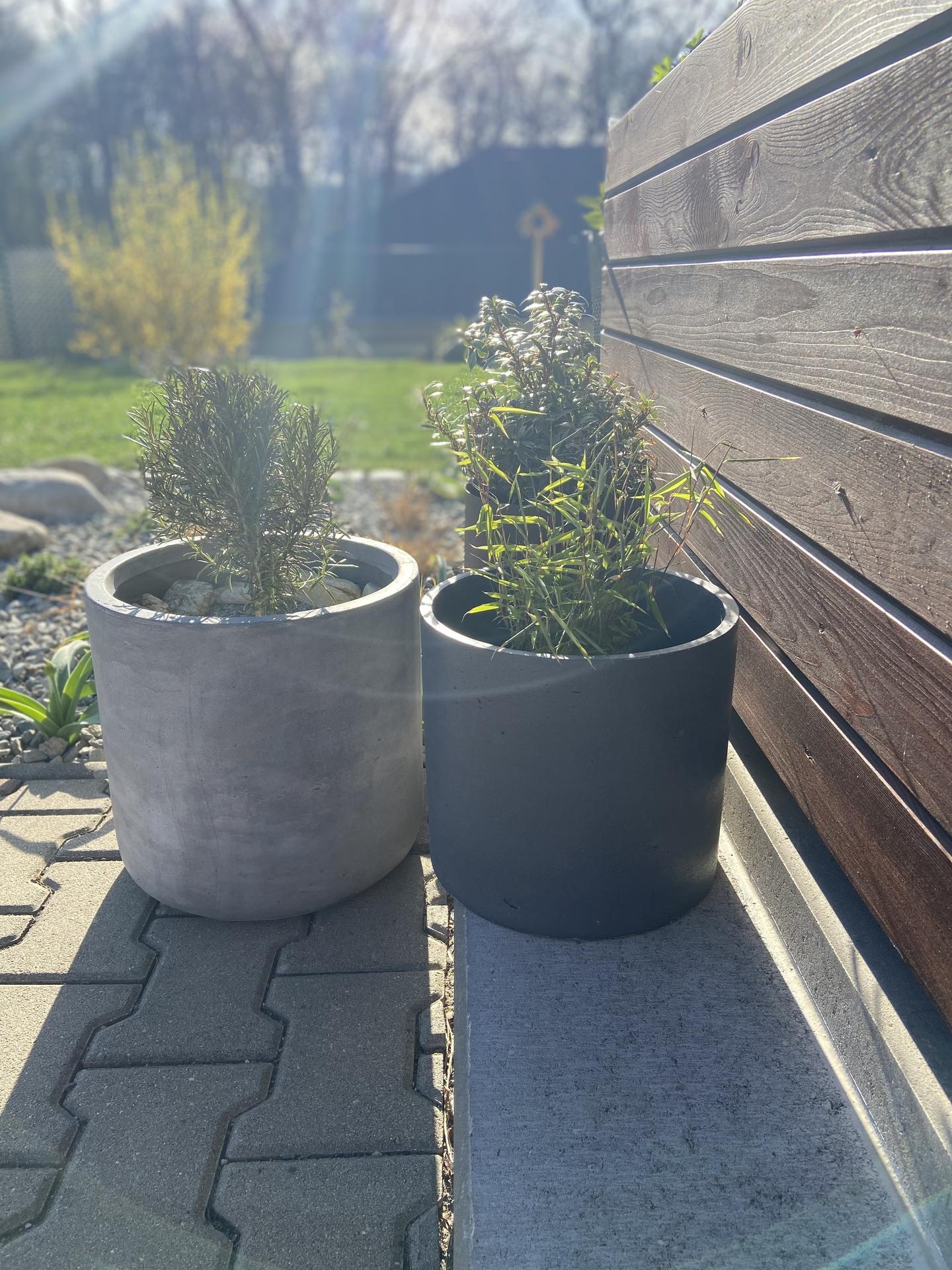 Pergola + zimní zahrada + zahrada - Obrázek č. 66