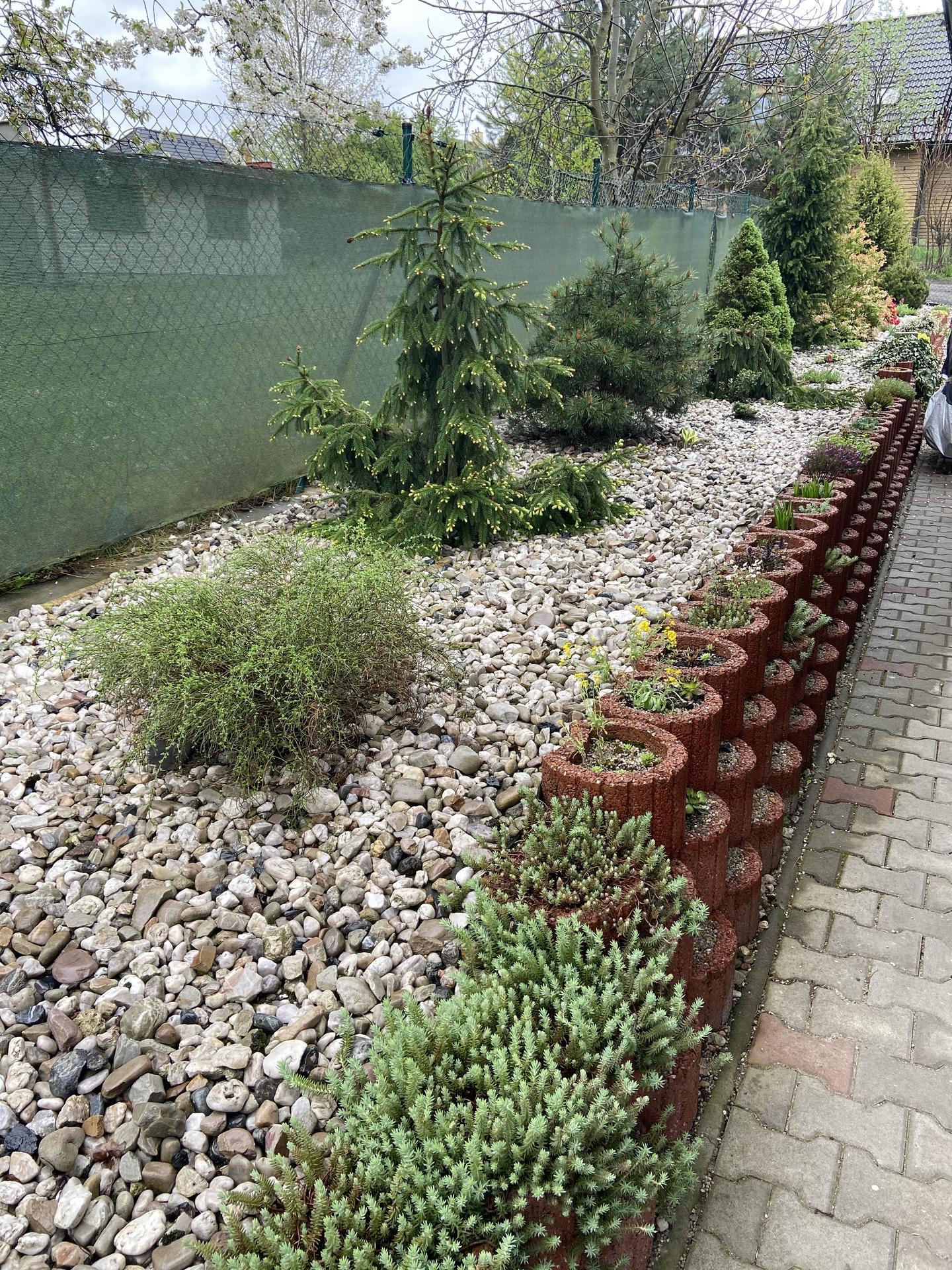Pergola + zimní zahrada + zahrada - Naše svahovky dlouhé po cele délce pozemku