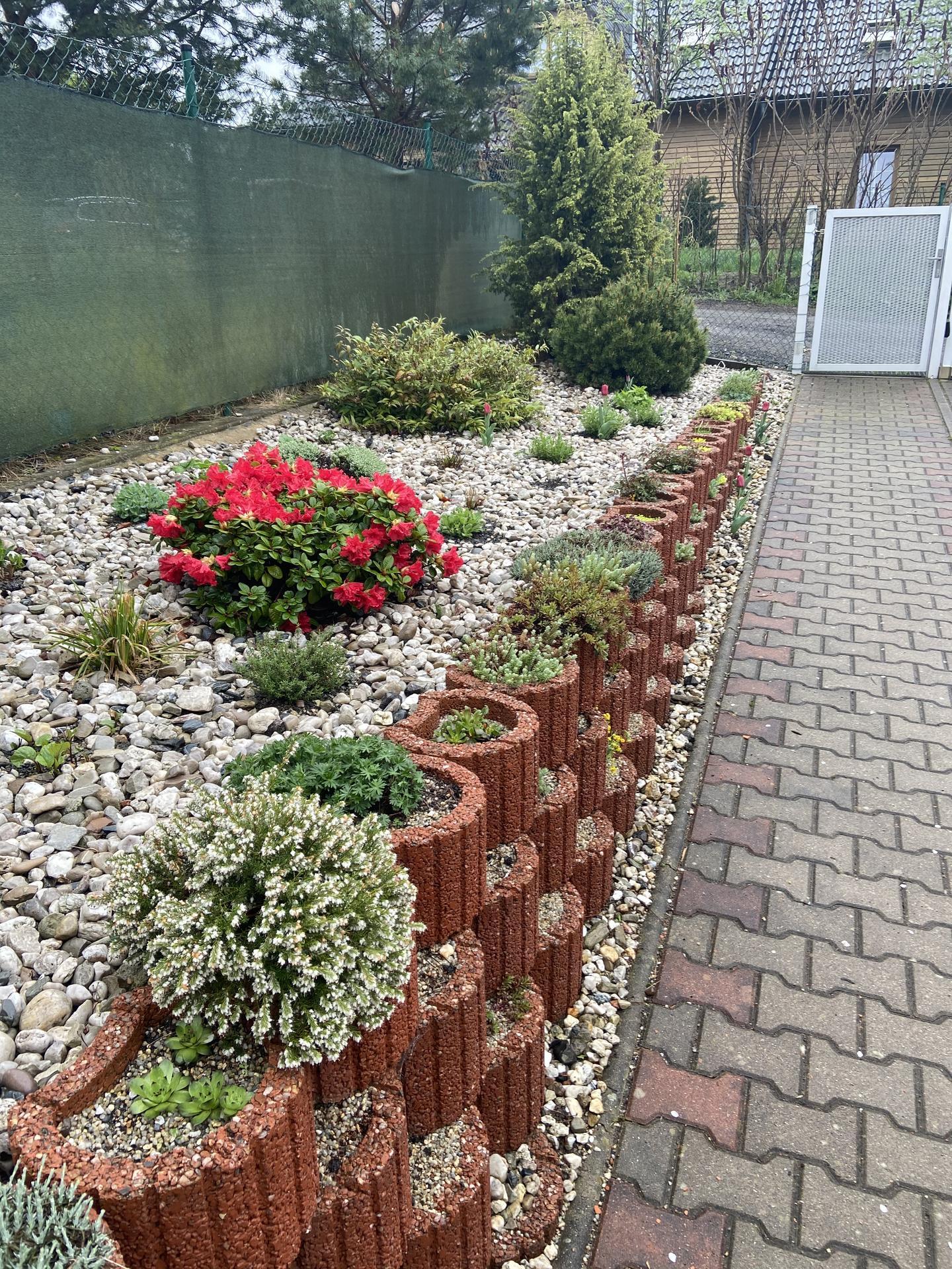Pergola + zimní zahrada + zahrada - Obrázek č. 71