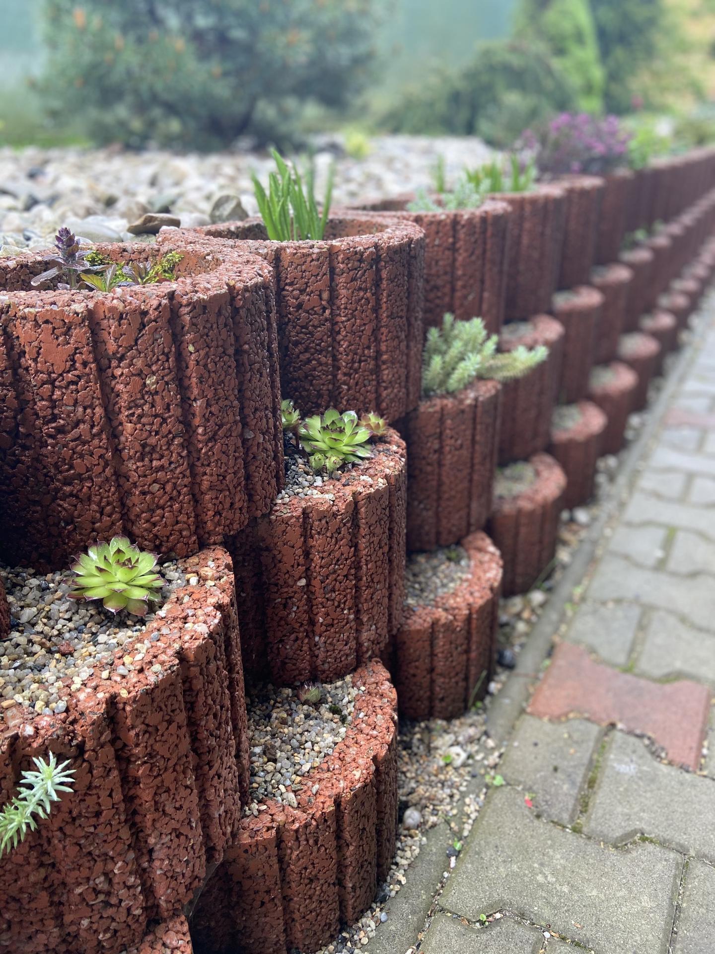 Pergola + zimní zahrada + zahrada - Obrázek č. 74