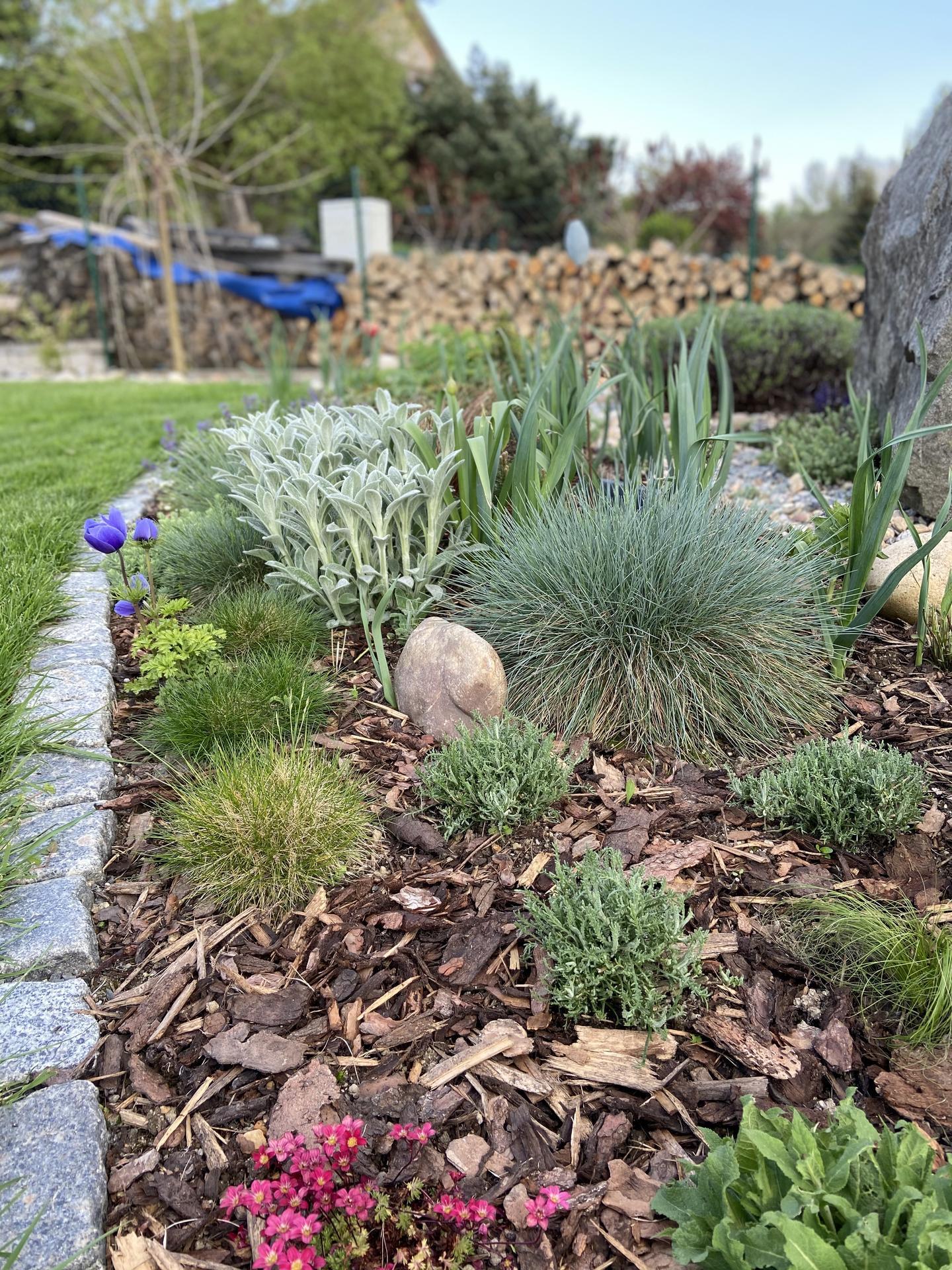 Pergola + zimní zahrada + zahrada - Obrázek č. 85