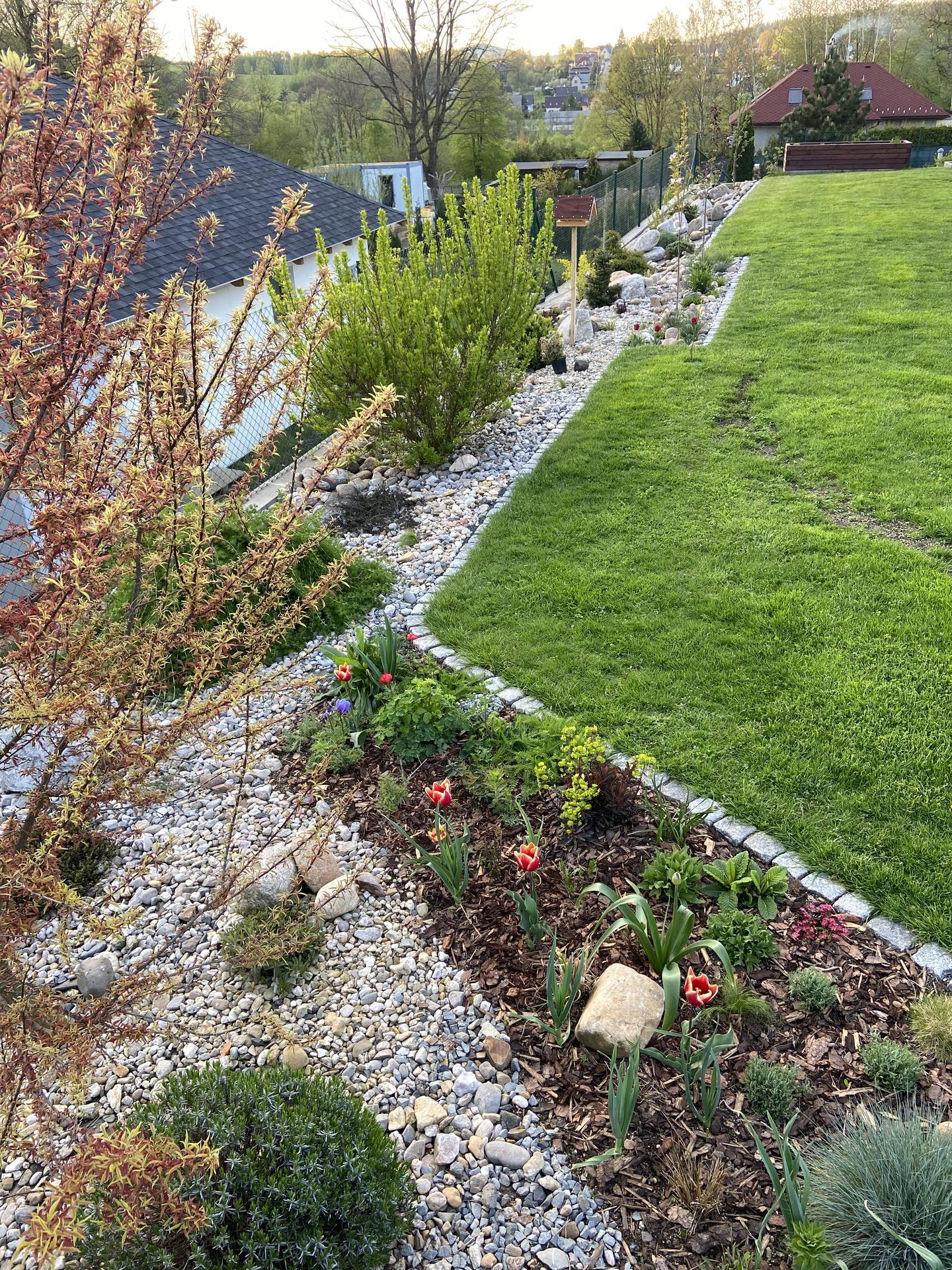 Pergola + zimní zahrada + zahrada - Obrázek č. 80
