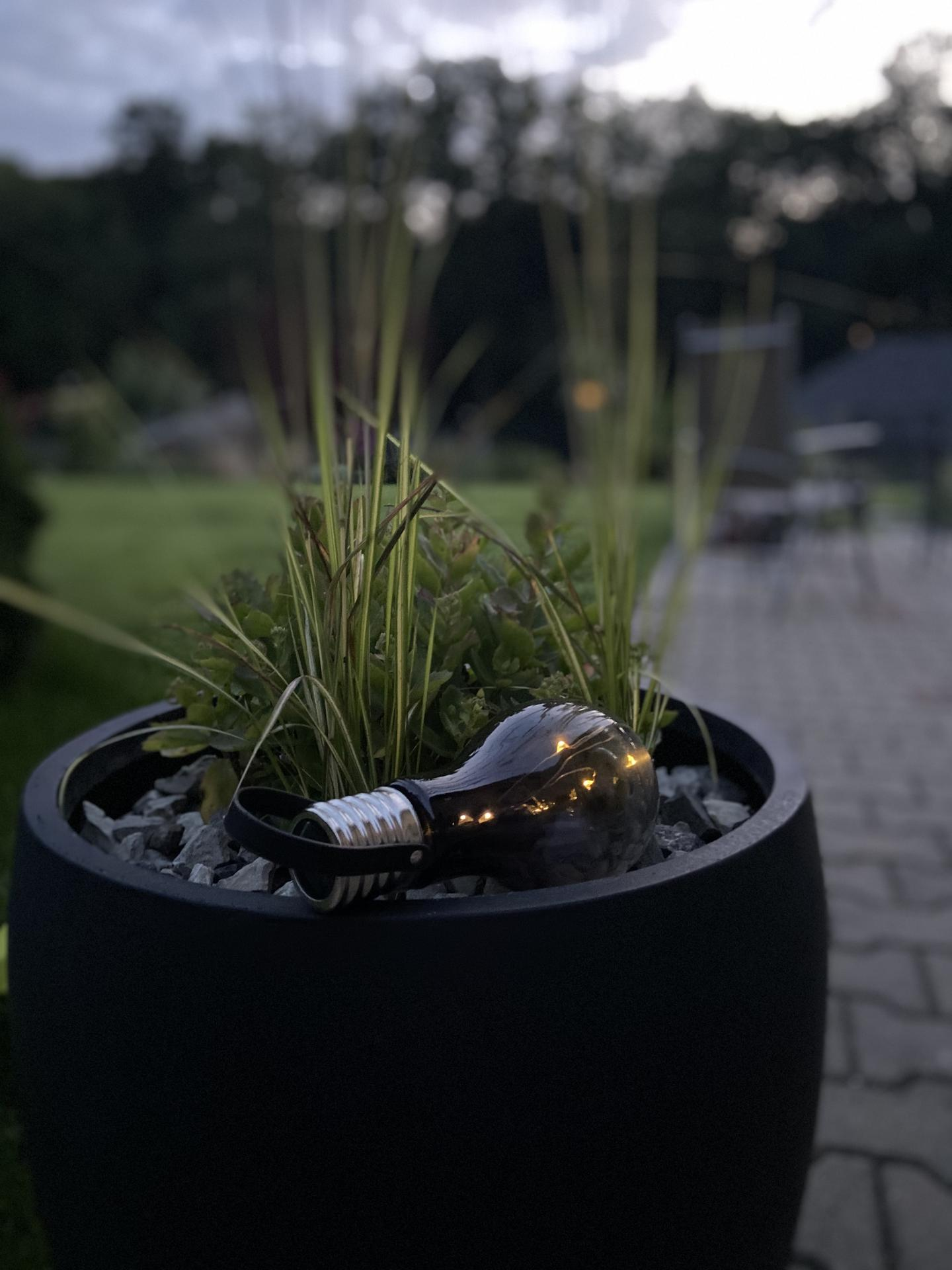 Pergola + zimní zahrada + zahrada - moje nové lampičky