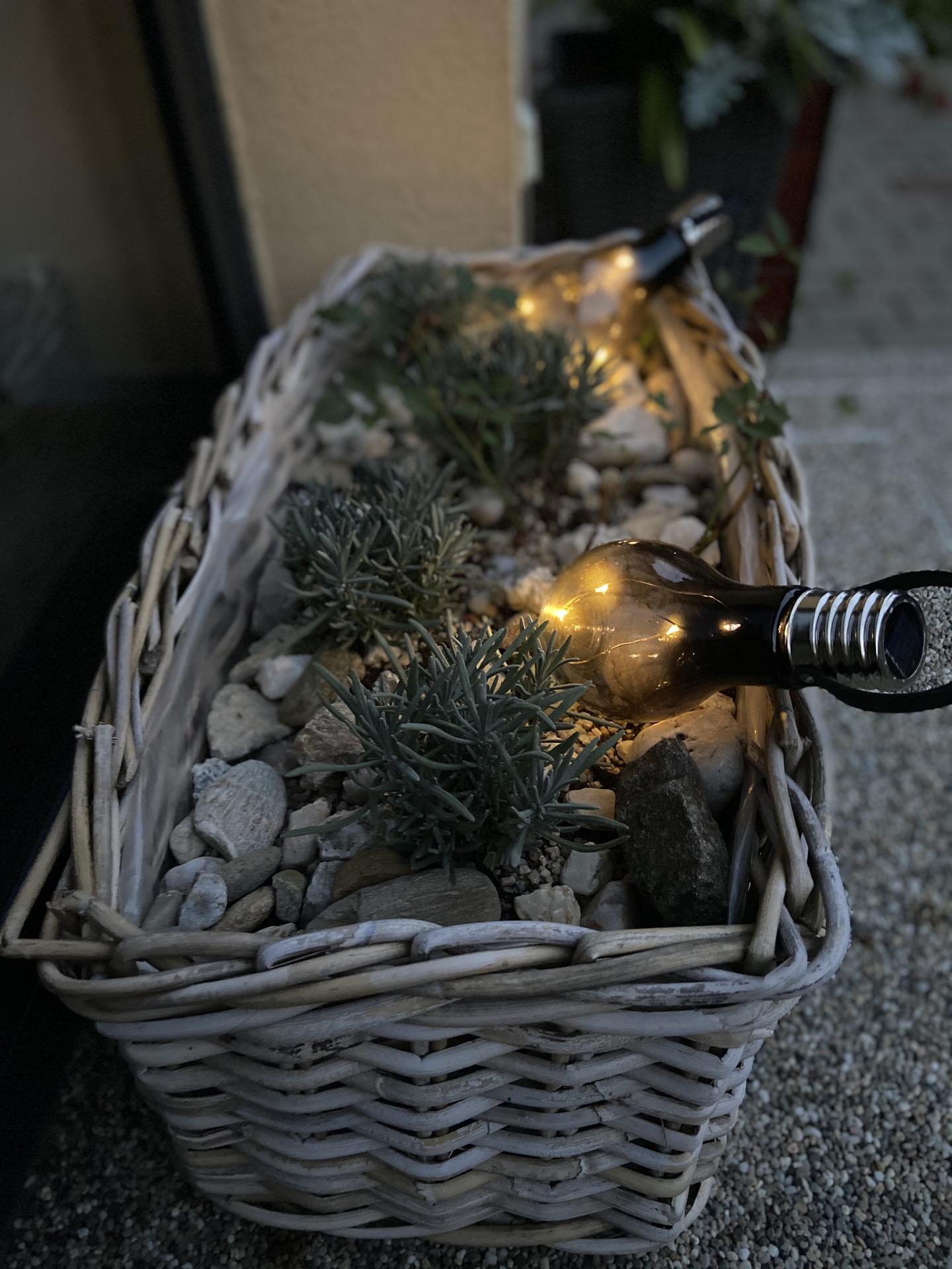 Pergola + zimní zahrada + zahrada - a zase lampičky