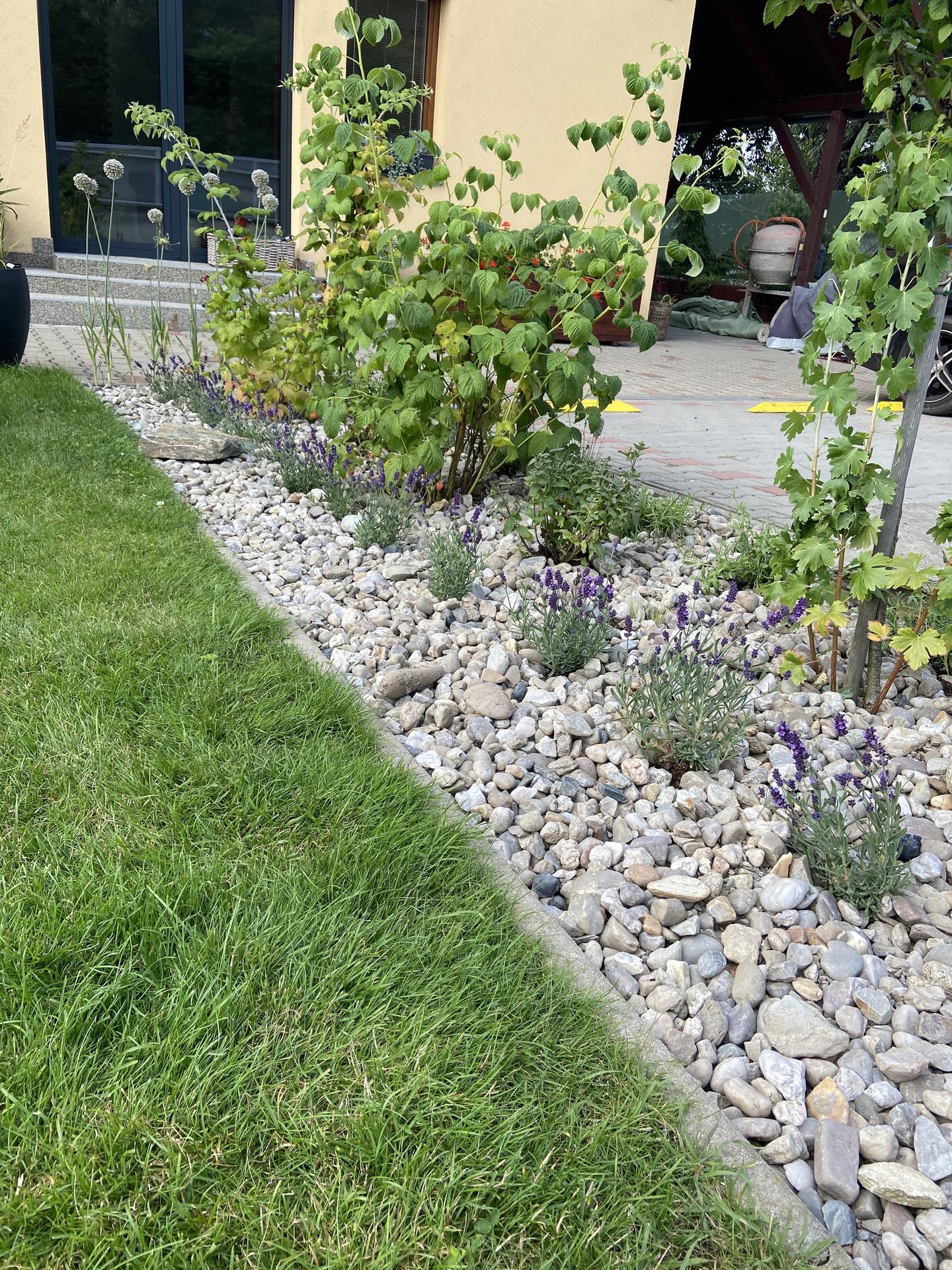 Pergola + zimní zahrada + zahrada - dokupuju a dokupuju