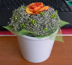 Už jsem v IKEA sehnala i květináčky. V květinářství ještě aranžovací hmotu a celá jedna kytička stála 70 Kč. To není tak hrozný :-)