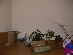 a do druhýho kouta obýváku jsme nastrkali nějaký krabice, abysme o ně vytrvale nezakopávali v předsíni