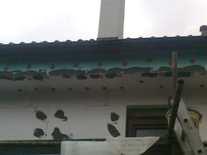 a vrabce skončili :-)