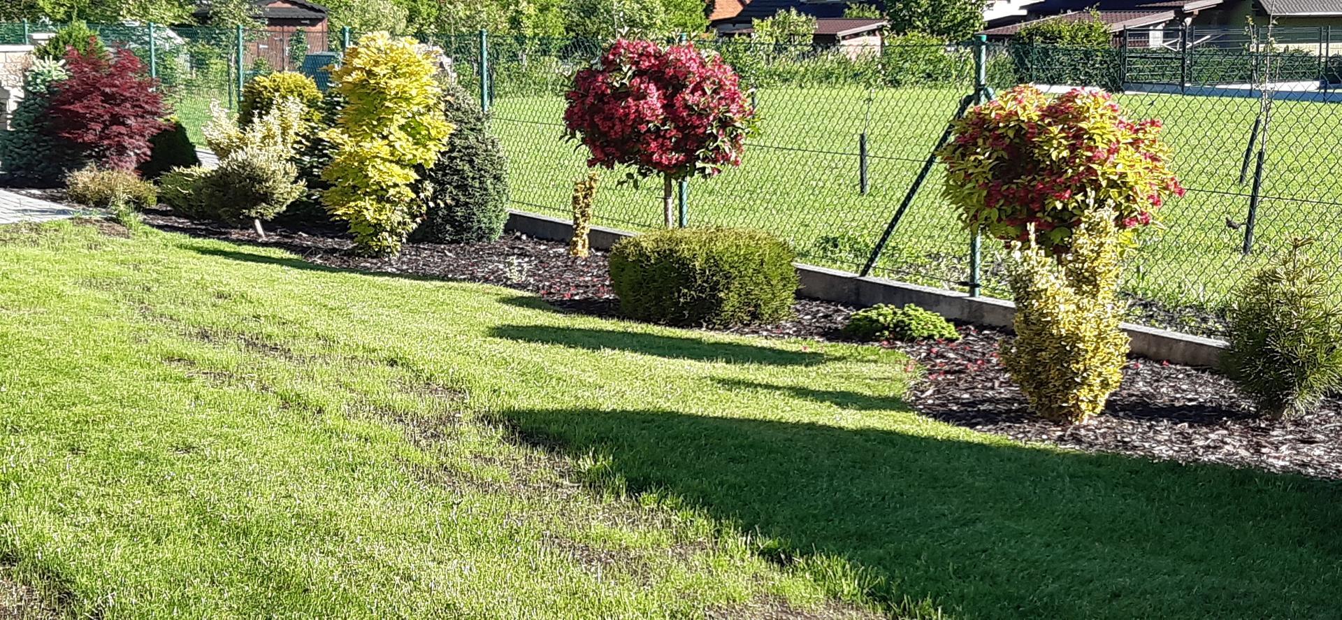 Zahrada 2020 - Obrázek č. 24