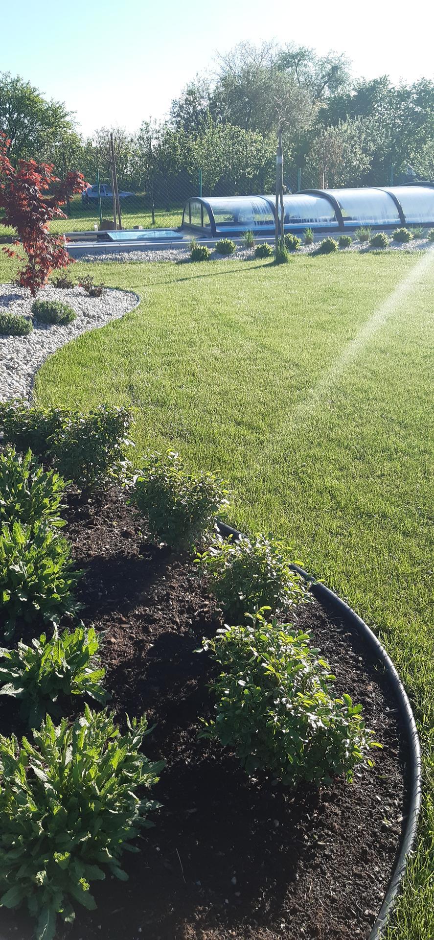 Zahrada 2021 - Obrázek č. 15