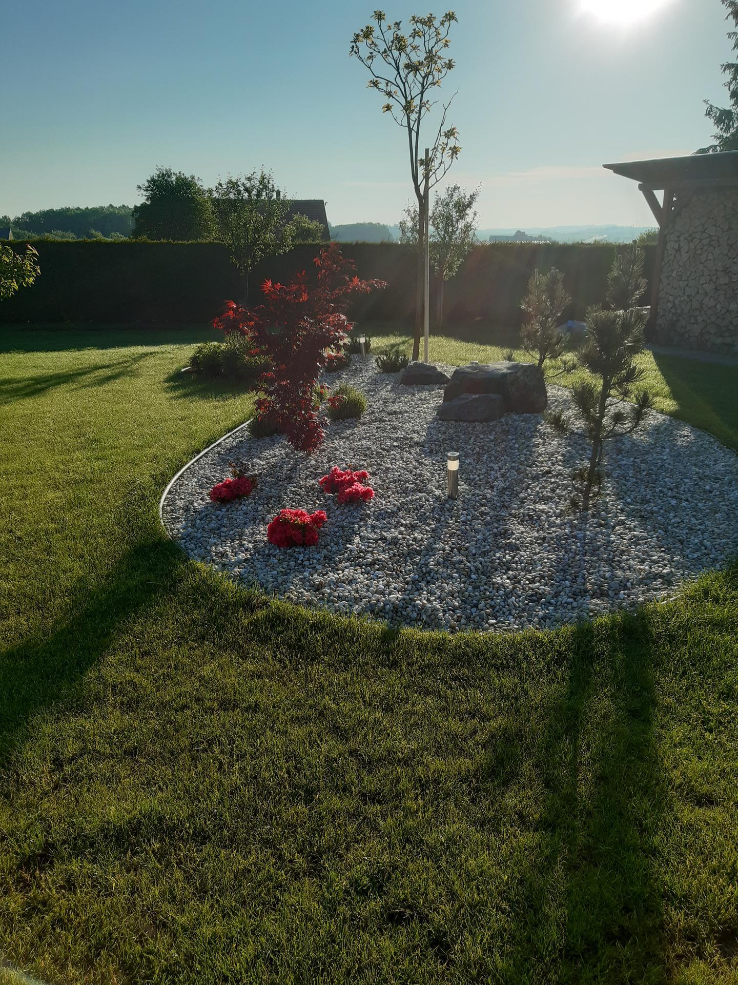 Zahrada 2021 - Obrázek č. 21