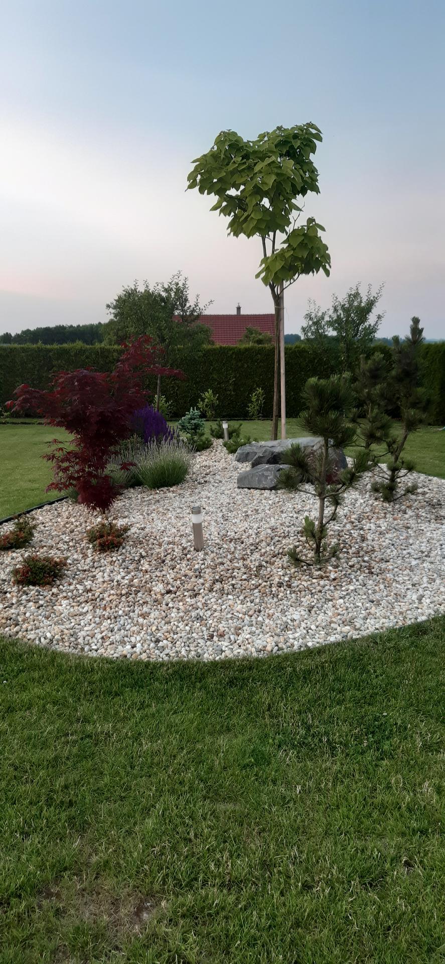 Zahrada 2021 - Obrázek č. 31