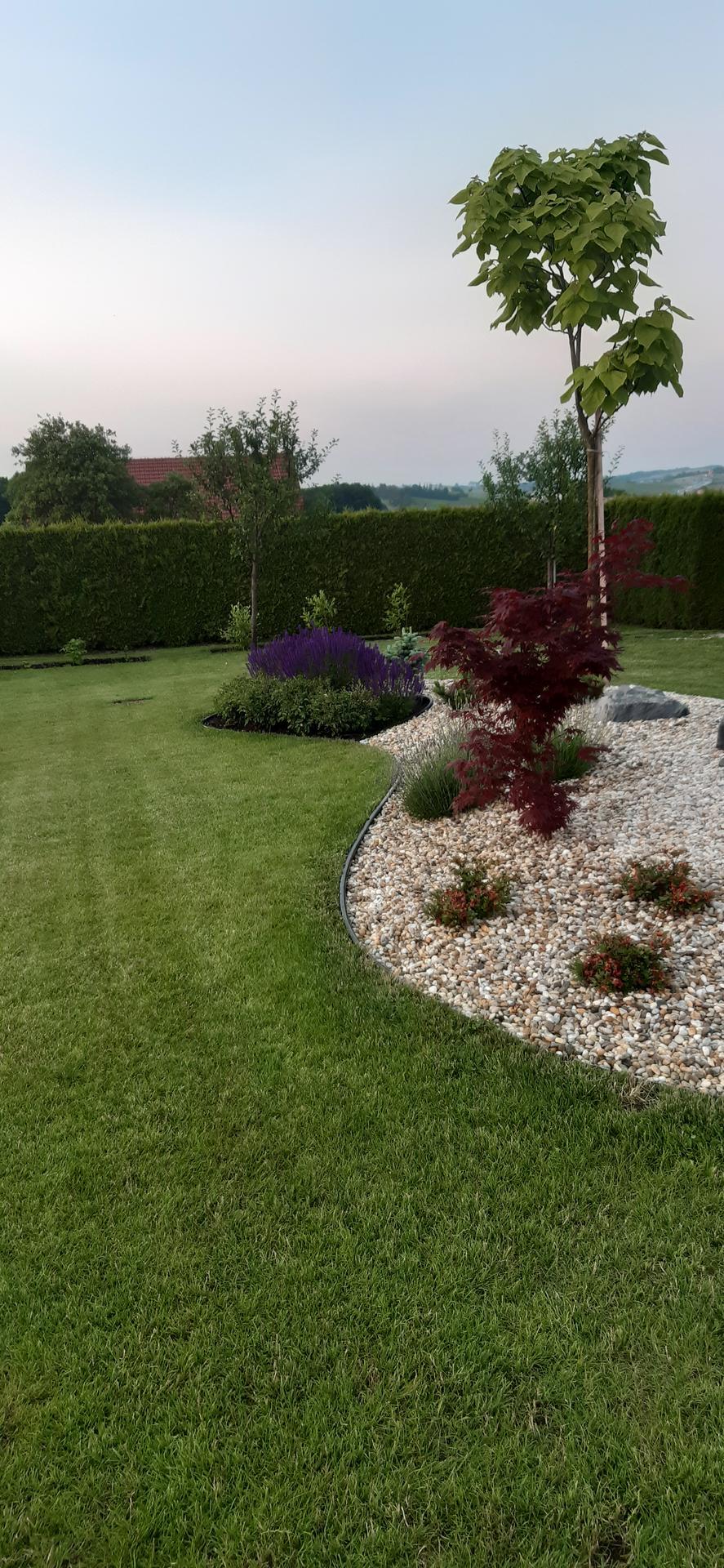 Zahrada 2021 - Obrázek č. 29