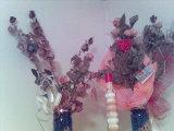 Jurko a Katka - všetky ružičky od Jurka mám usušené
