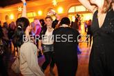 Svatební párty 2011