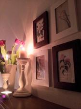 """..obrázky """" botanical art """"..."""