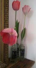 ..fľaštičky majú super využitie...čo už keď mi drobec rozbil moju obľúbenú vázu...