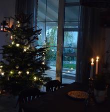 ...stromček náš vianočný.....