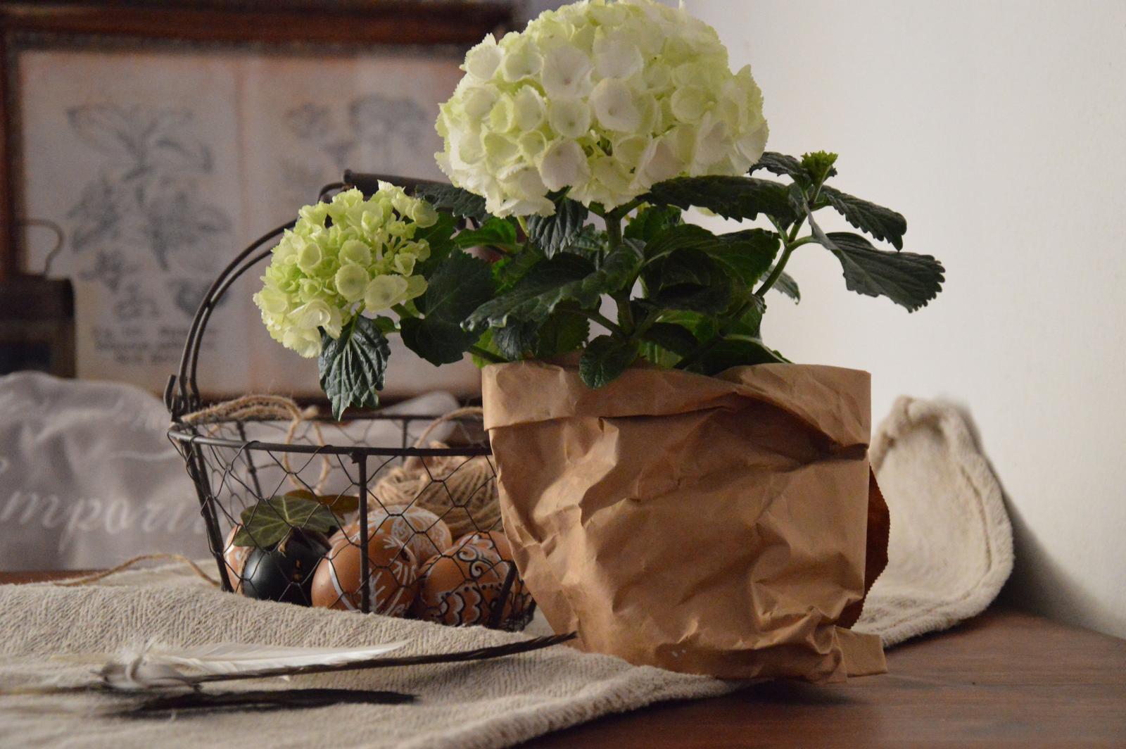 Home sweet home...... - ...maľujeme vajíčka :-)