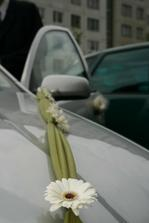 a detaily našich autíčiek..