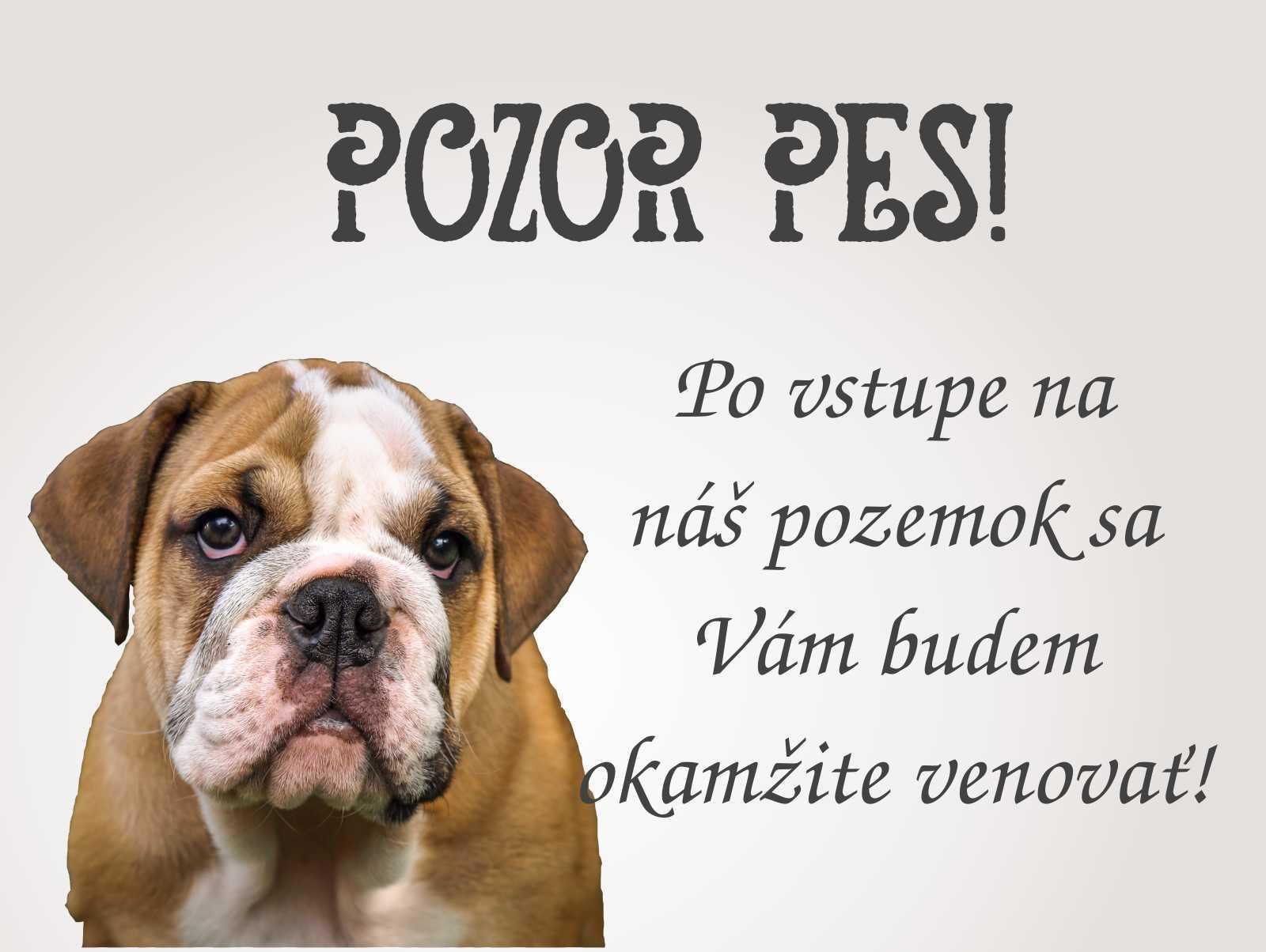 Tabuľka : Pozor pes! - Obrázok č. 2
