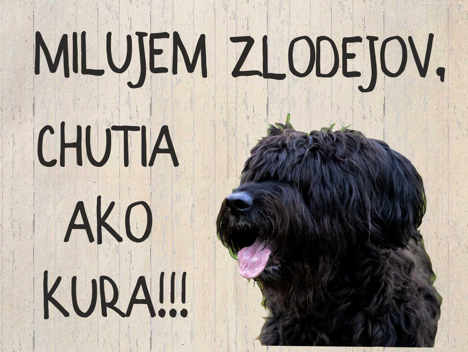 Tabuľka : Pozor pes! - Obrázok č. 3