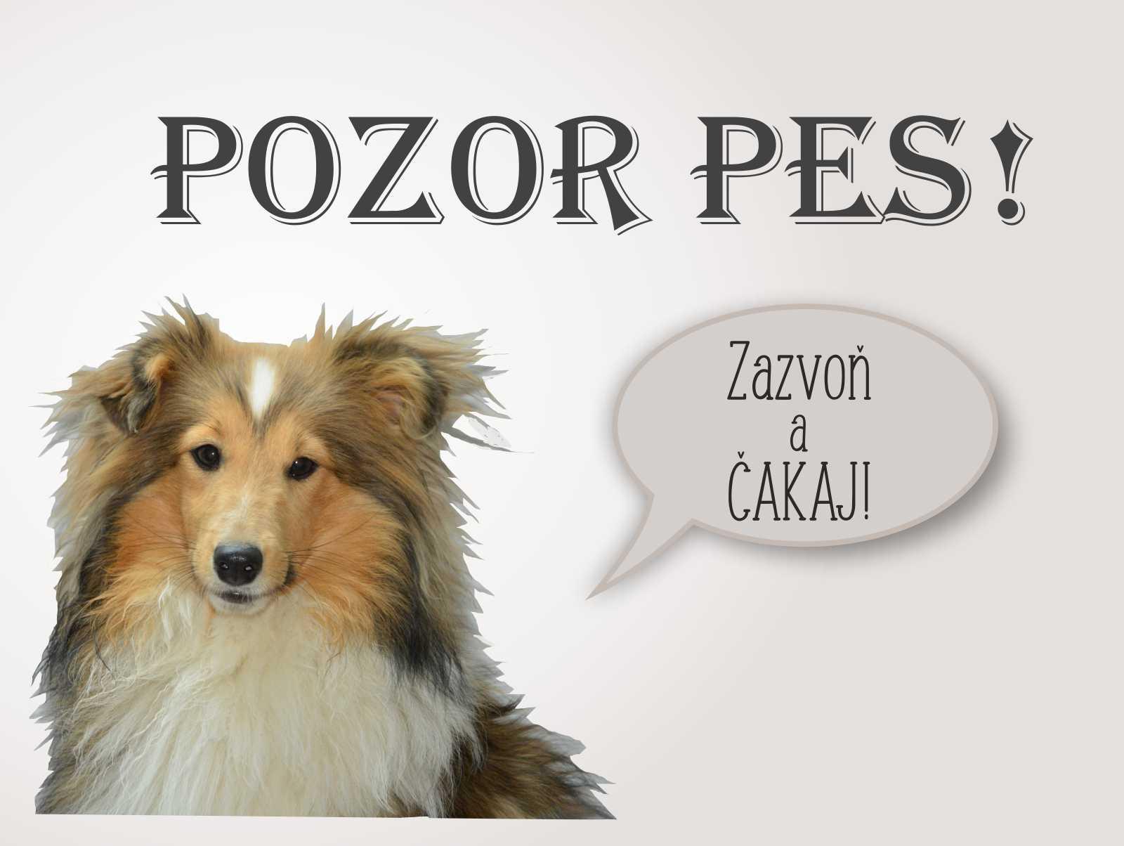 Tabuľka : Pozor pes! - Obrázok č. 6