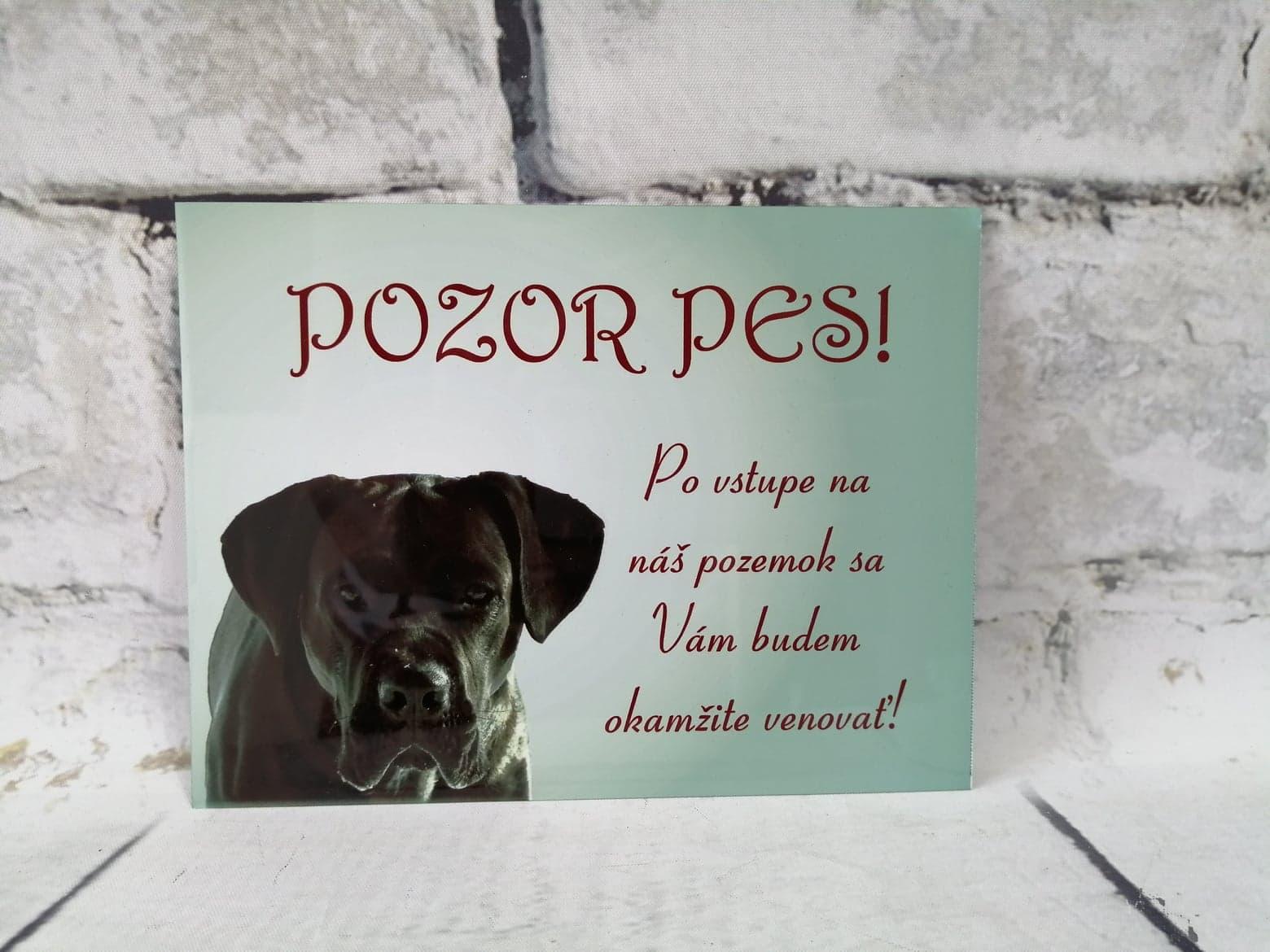 Tabuľka : Pozor pes! - Obrázok č. 8