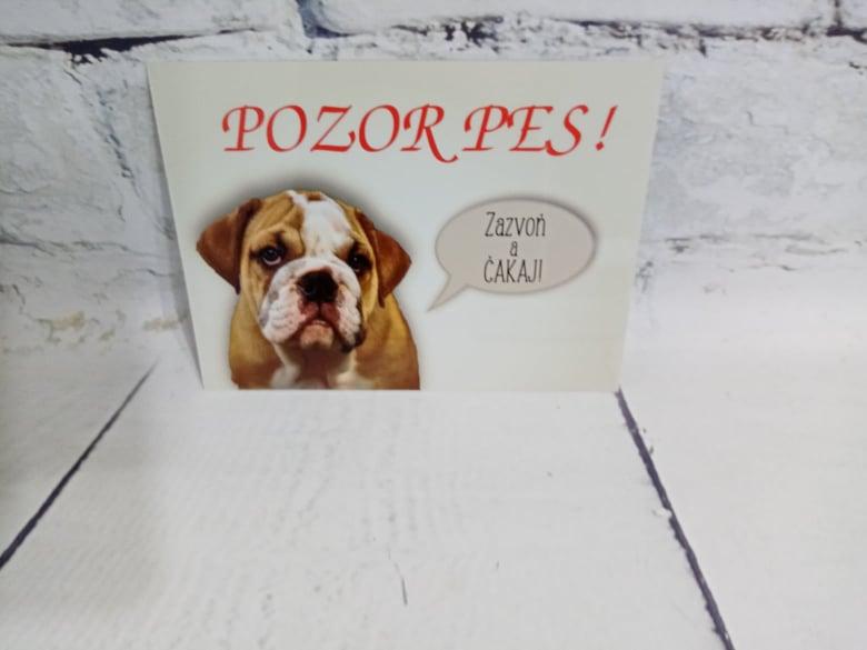Tabuľka : Pozor pes! - Obrázok č. 10