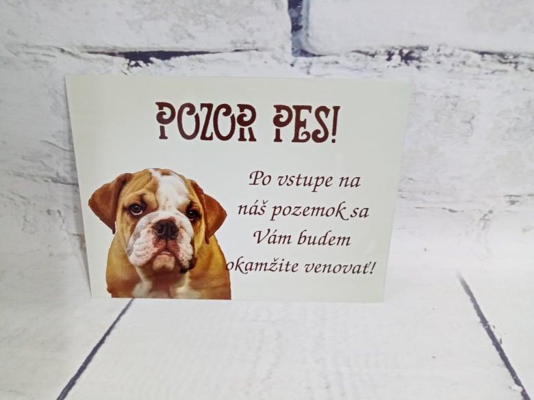 Tabuľka : Pozor pes! - Obrázok č. 11