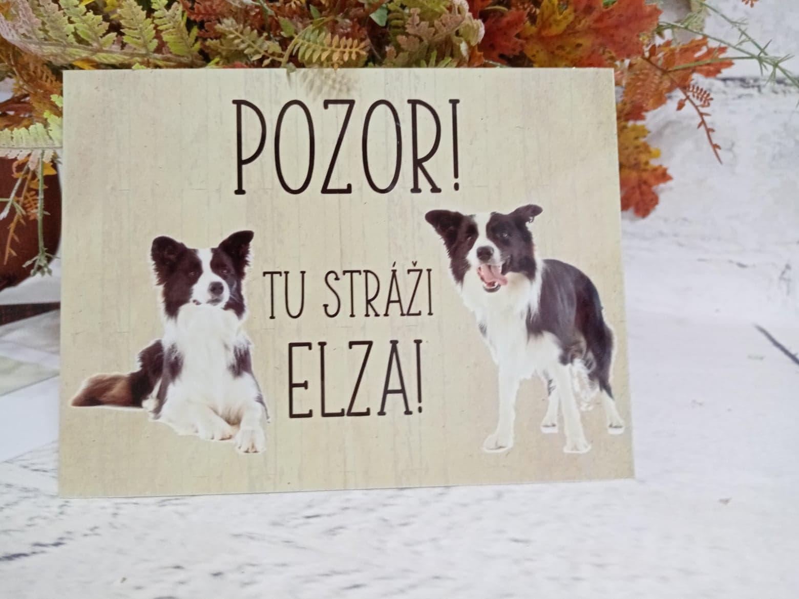 Tabuľka : Pozor pes! - Obrázok č. 12