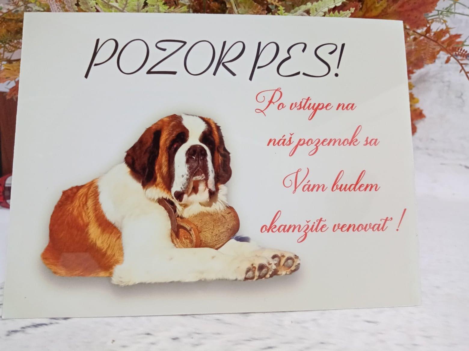Tabuľka : Pozor pes! - Obrázok č. 13