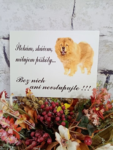 Tabuľka : Pozor pes! - Obrázok č. 15