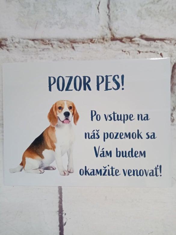 Tabuľka : Pozor pes! - Obrázok č. 16