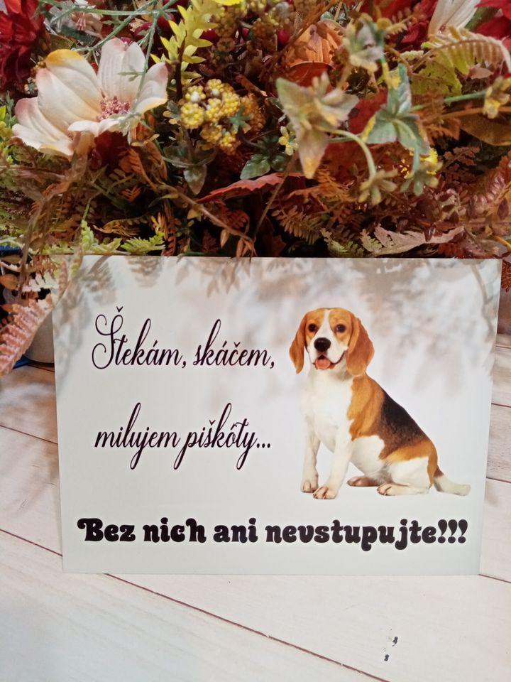 Tabuľka : Pozor pes! - Obrázok č. 17