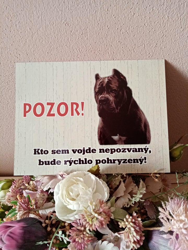 Tabuľka : Pozor pes! - Obrázok č. 19