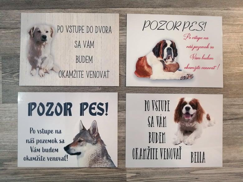 Tabuľka : Pozor pes! - Obrázok č. 20