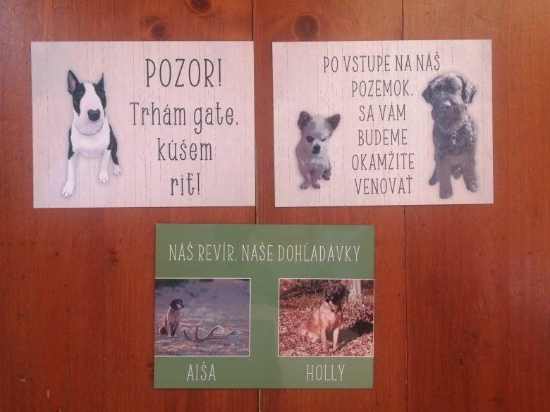 Tabuľka : Pozor pes! - Obrázok č. 21