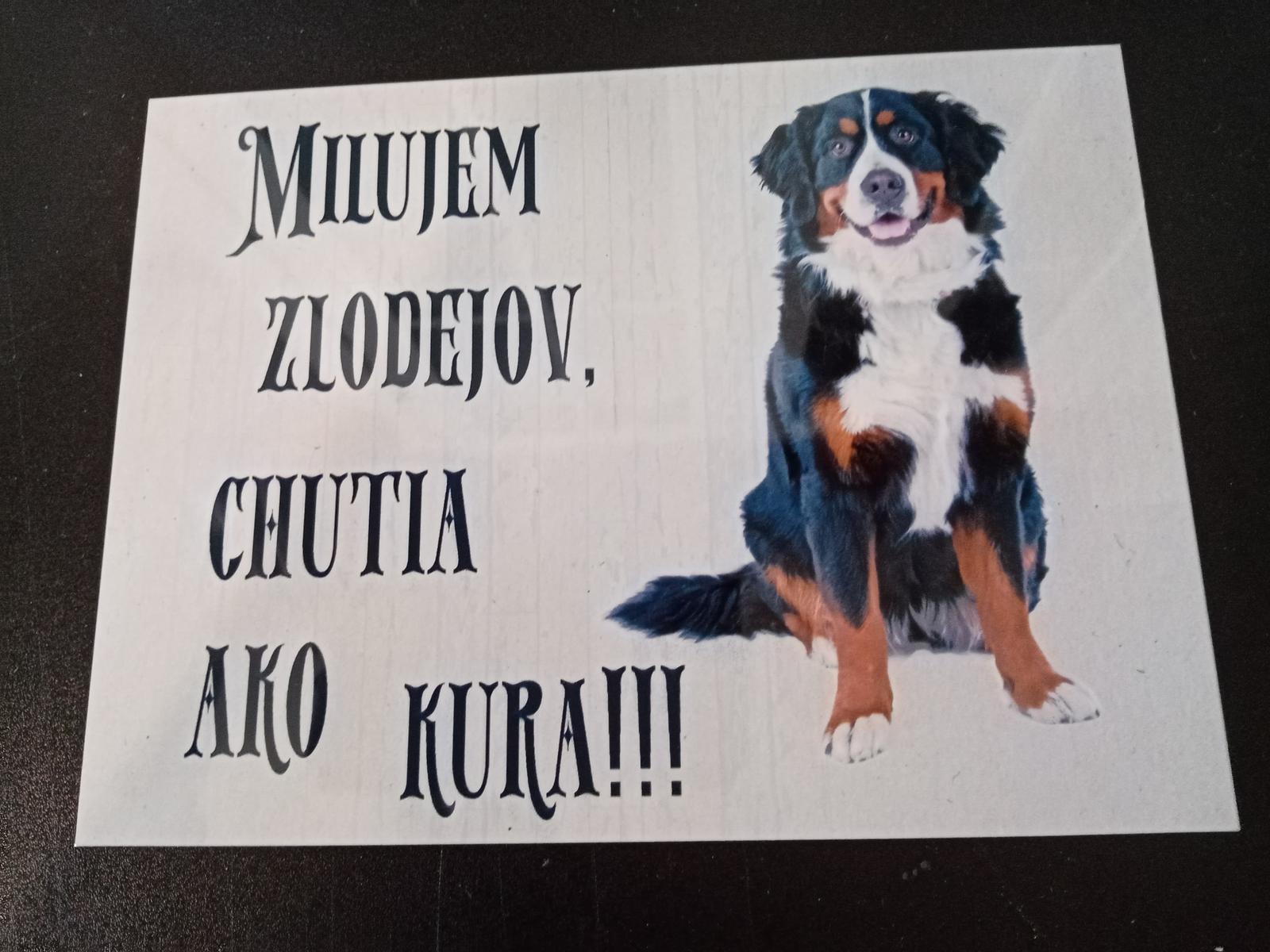 Tabuľka : Pozor pes! - Obrázok č. 22