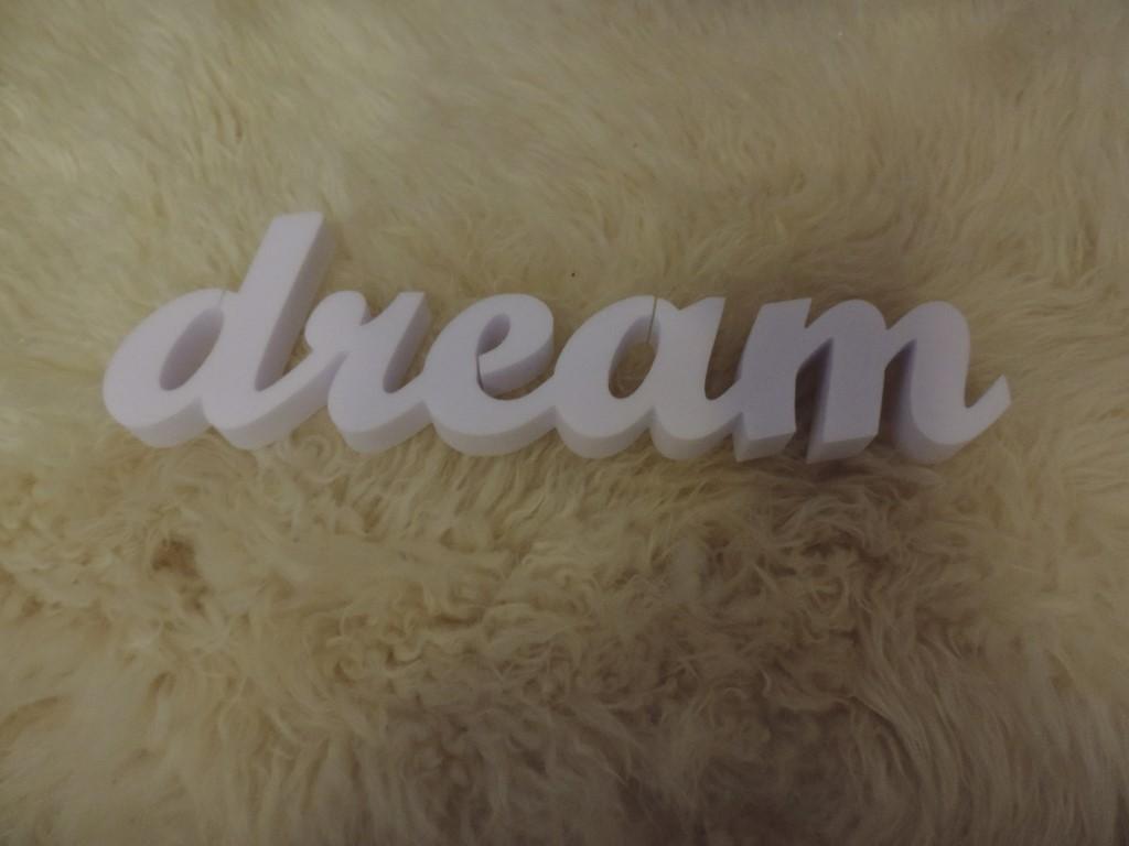Dreams - Obrázok č. 2
