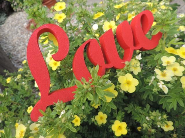 Nápis LOVE - Obrázok č. 4