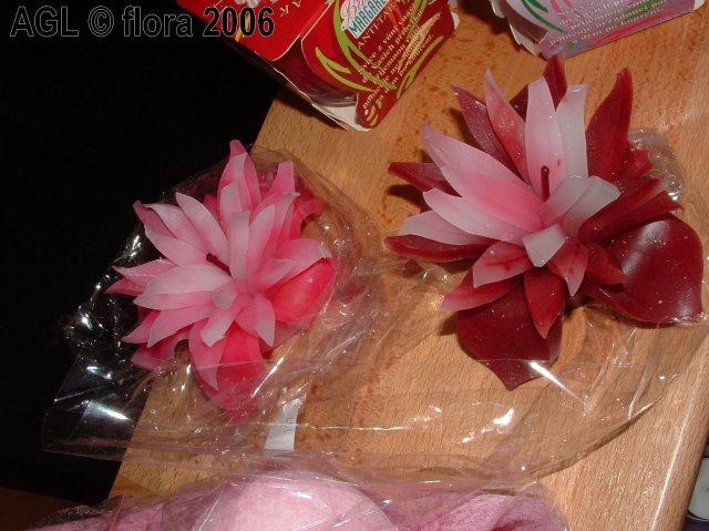 Flora 2006 II. - Obrázok č. 2