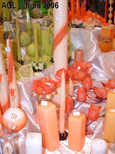Flora 2006 II. - Obrázok č. 17