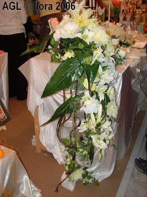 Flora 2006 II. - Obrázok č. 18
