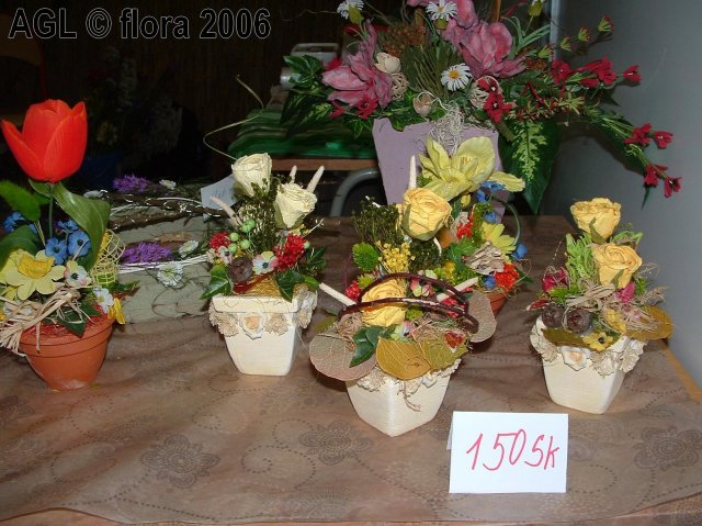 Flora 2006 II. - Obrázok č. 20