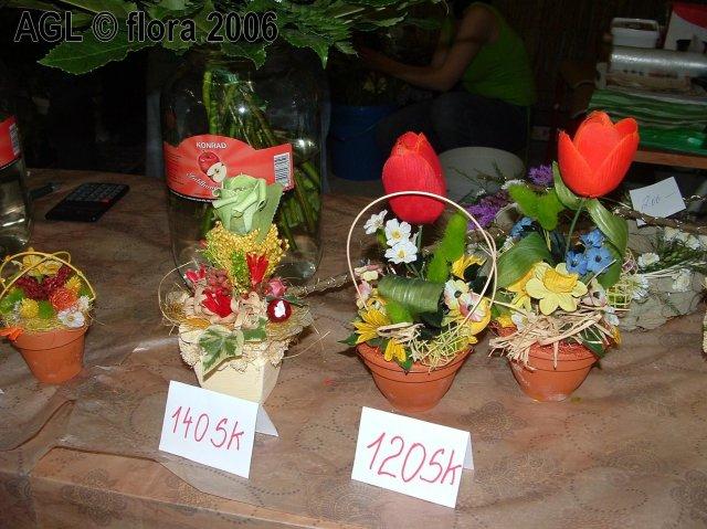 Flora 2006 II. - Obrázok č. 21