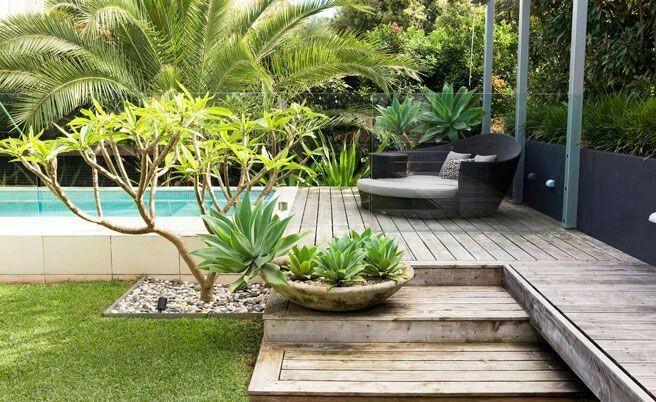 Bazén v malej záhradke - Obrázok č. 17