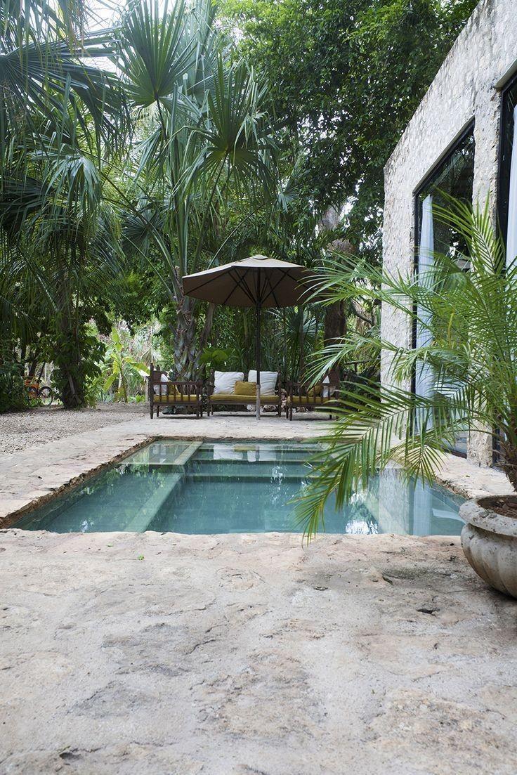 Bazén v malej záhradke - Obrázok č. 27